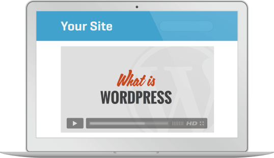 Us Our Wordpress Tutorial Videos On Your Site