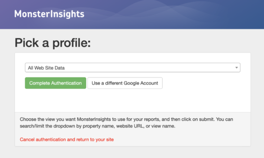 MonsterInsights Pick a Google Analytics Profile