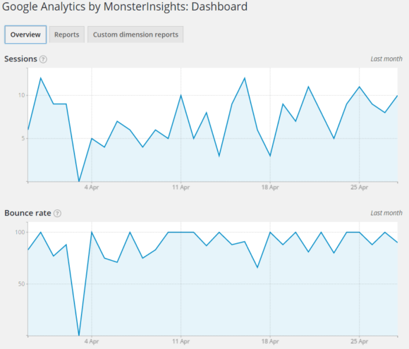 monsterinsights dashboard overview